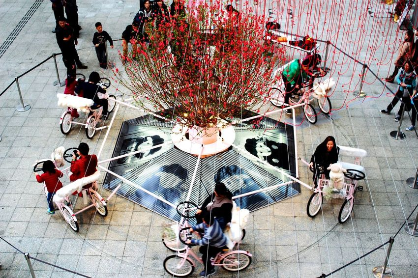 2015 Life In Hong Kong · Hong Kong Enjoying Life Nature In The City Chinese New Year Merry-go-round Check This Out Creative Design Eye4photography
