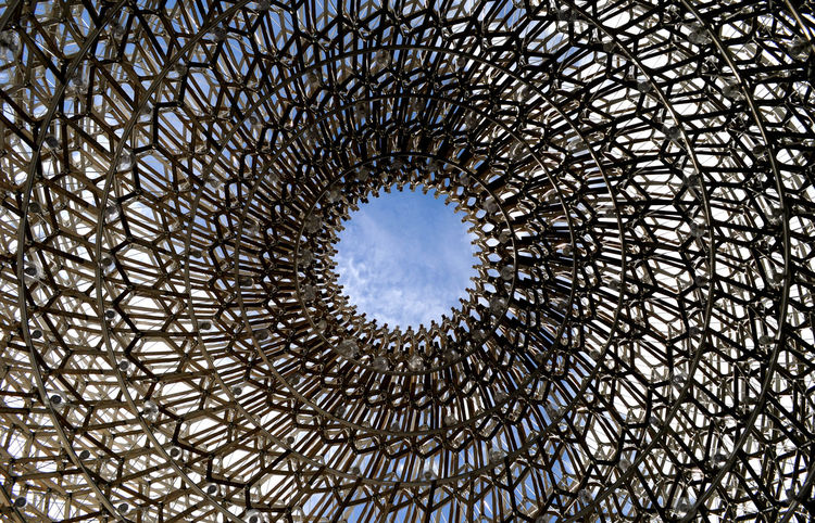 Architectural Feature Architecture Architecture And Art Built Structure Circle Cloud - Sky Concentric Creativity Day Directly Below Geometric Shape Kew Gardens, London Low Angle View Modern No People Sky Structure The Hive Structures And Architecture Circles Lookingup Beautifully Organized The City Light Break The Mold Art Is Everywhere The Graphic City