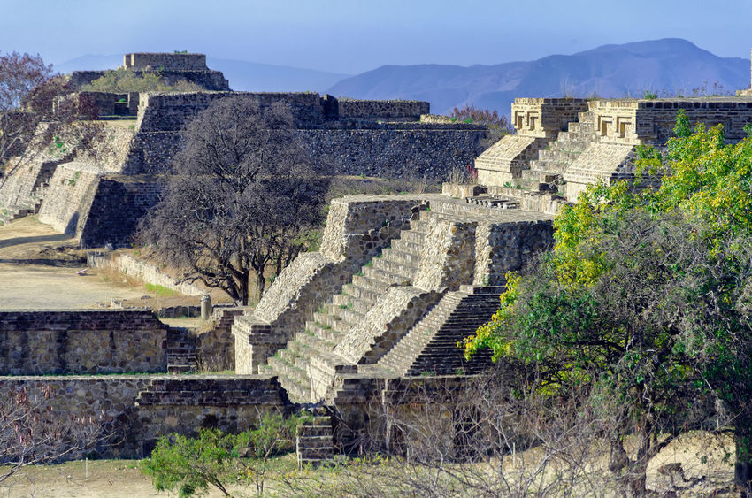 The west side platform at the Monte Alban Pyramid Complex in Oxaca, Mexico Archaeology Mayan Mayan Ruins Mexico Oaxaca Oaxaca México  Ruins Tree America Ancient Archaeological Sites Architecture Building Complex History Maya Monte Alban Old Old Ruin Outdoors Piramid Platform Ruin Temple Tourism