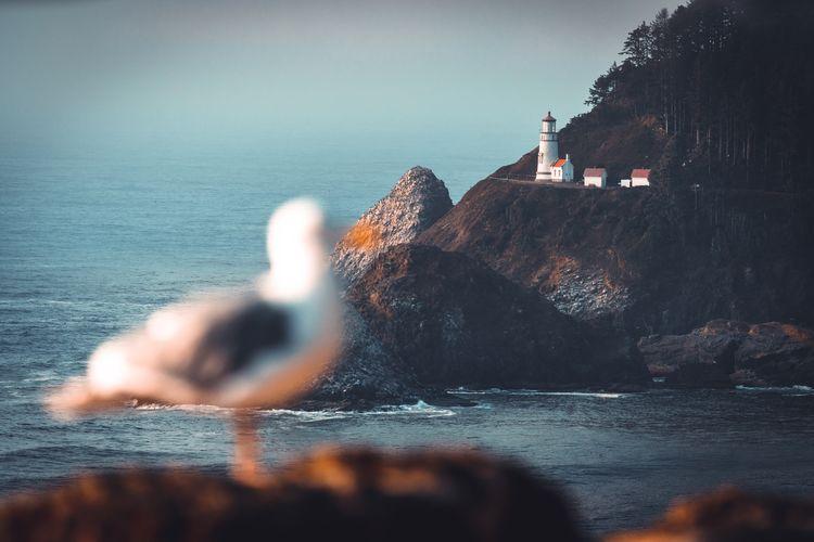 Water on rock in sea against sky