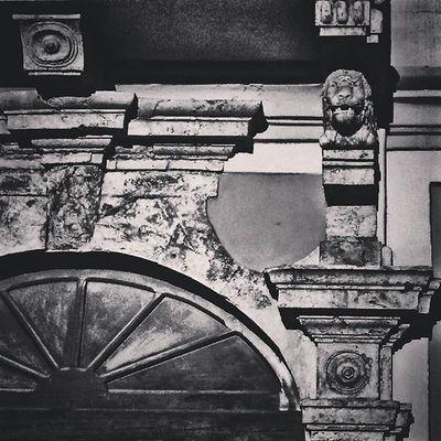 Dettagli. Castello Cagliari Loves_cagliari Loves_sardegna Blackandwhite Bnw Sardegnaofficial Leon Architecture Fotografi_amo Ig_sardinia Bnw_sardinia Igers_Sardegna Instasardegna Volgosardegna Volgoitalia IG_PERLAS Volgocagliari Vivosardegna Grazieadiosonosardo Amazing Beautiful Igersitalia Photoshoot Photooftheday bwstyles_gf bw_lover igerscagliari architectureporn italy