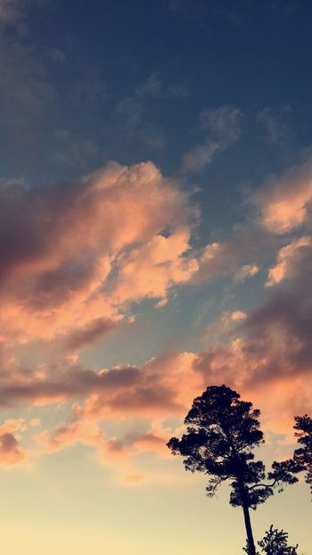 Cloud - Sky Tranquility Silhouette Sunset Beauty In Nature
