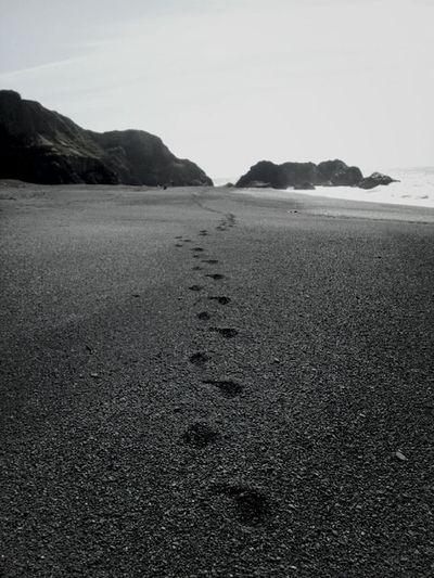 footsteps Taking Photos Enjoying Life Hanging Out Beach
