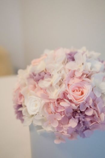 Arrangement Flower Flower Collection Flowers Pale Pastel Pink Pink Color Pink Flower Pink Rose Hydrangea Home Home Interior Roses Pastel Power