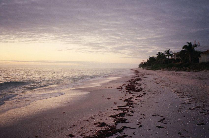 Beach Beauty In Nature Calm Coastline Florida Florida Sunset Horizon Over Water Idyllic Nature No People Non Urban Scene Non-urban Scene Ocean Remote Sand Scenics Sea Shore Sky Tranquil Scene Tranquility Travel Destinations Water