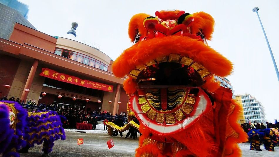 lions dance Lion Dance Performance Cny2018 YYC Yyc Calgary Alberta Canada Chinese New Year Dragon Arts Culture And Entertainment History Red Cultures Chinese Lantern Festival Architecture Traditional Festival Built Structure Chinese Dragon City Outdoors People