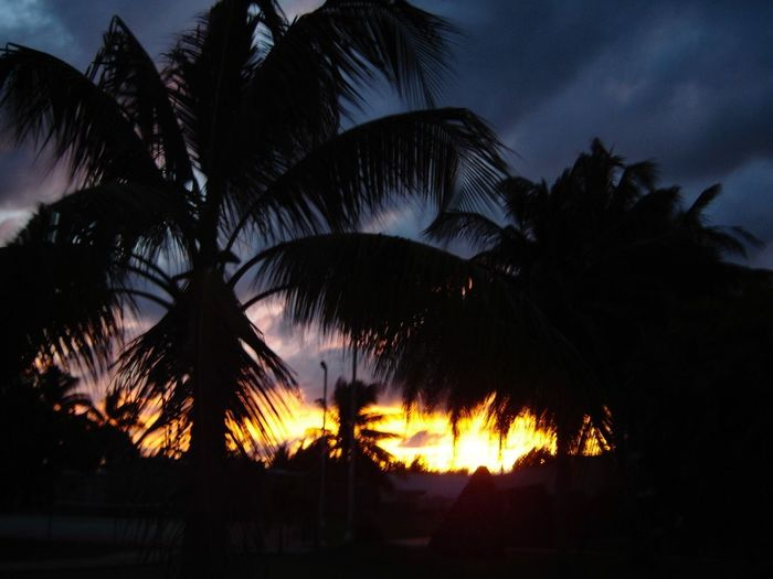 Sunset_collection Cuba Santa Maria Beach Colour Of Life Sunset Silouette