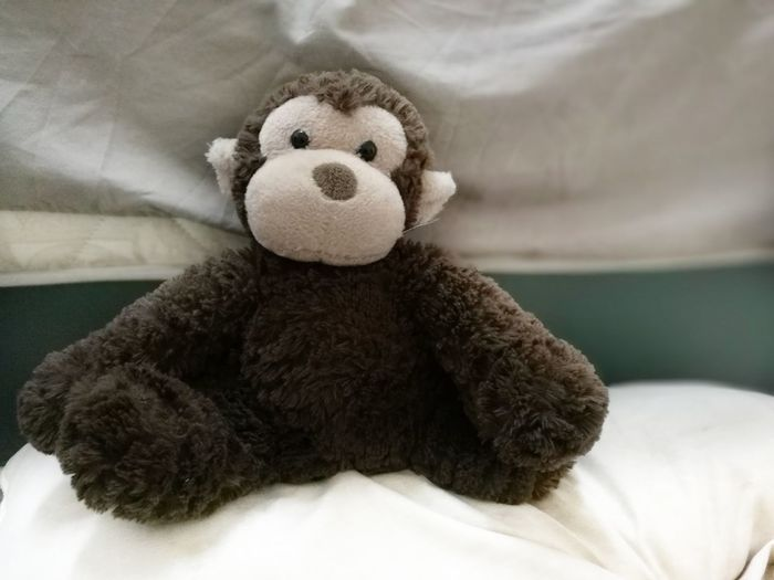 Stuffed Toy Teddy Bear Sleeping Bed Wool Lying Down Indoors  No People Day Close-up Bedroom Mammal Monkey Bestfriend Kid Toy Not Alive