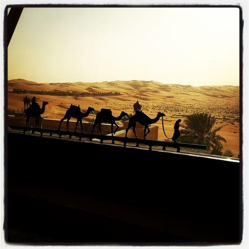 Dubaimylove Escursioniguidate Visiteguidate Guidedexcursions Visitdubai Guidaturisticaadubai Liwaoasis Liwa Abu Dhabi Emptyquarter