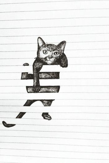 Smart Simplicity Black And White Drawing Cat Streetart ArtWork My Artwork Creativity
