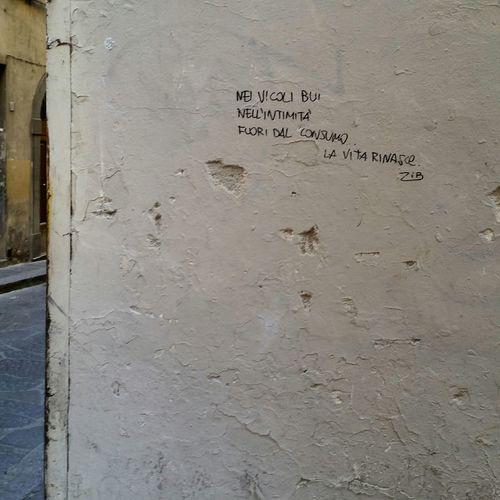 Firenze Florence Scrittesuimuri Bella Giornata