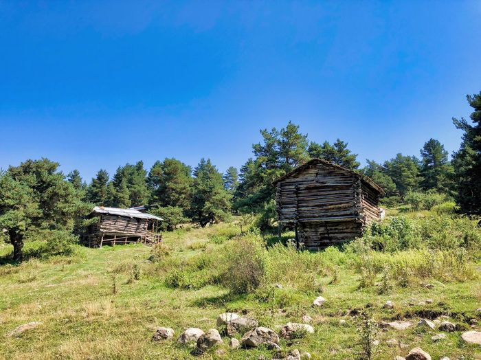 Abandoned wooden house on field against blue sky