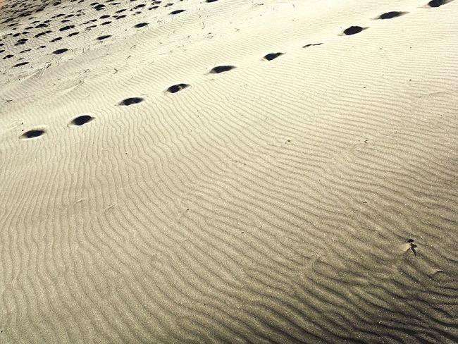 Sand Beach FootPrint Nature