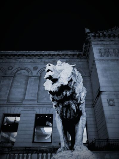 Night at the Art Institute of Chicago Low Angle View Architecture Travel Destinations No People Outdoors Artinstituteofchicago Artinstitute Chicago Illinois Chicago Chicago Architecture Chicago Downtown Chicago, Illinois Chicagoshots Chicago Life Chicago Streets Museum Of Art