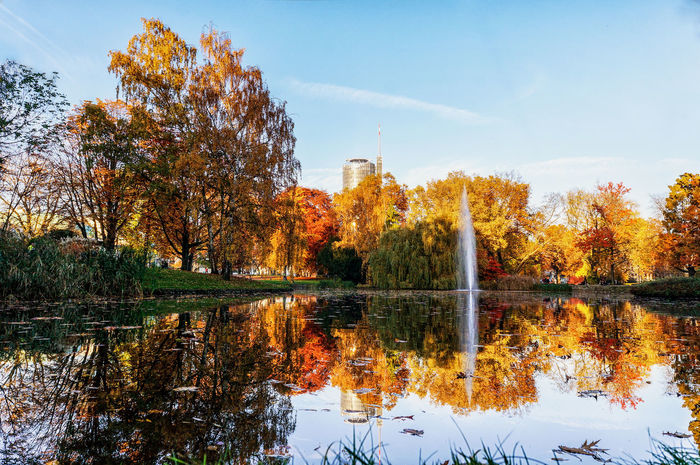Essener Stadtgarten im Herbst Autumn Beauty In Nature Nature Orange Color Outdoors Park Reflection Season  Battle Of The Cities Neighborhood Map #urbanana: The Urban Playground