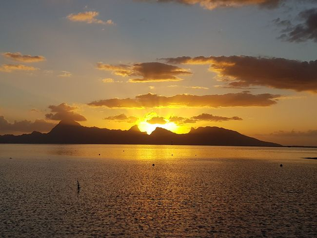 Moorea Island Water Vacations Travel Destinations Ilsland French Polynesia Tahiti Mer Sea Coucher De Soleil Sunset Tranquil Scene Beauty In Nature Sunlight Tourism Idyllic Tropical Climate Cloud - Sky