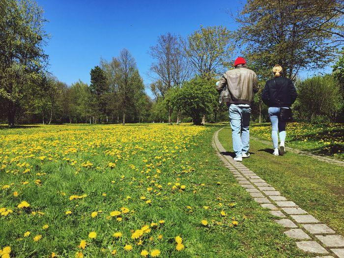 Rear View Of Couple Walking On Field