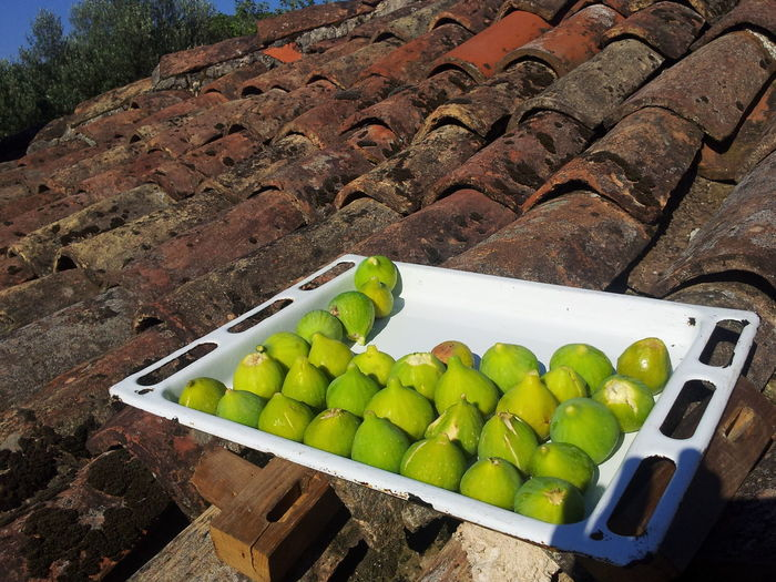 Drying figs on the roof.Food Healthy Eating Fruit Freshness Food And Drink Outdoors Day Mediterranean Life Mediterranean  Juicy Colors Mediterranean  Freshness Fruits Mediterranean Food Sunny☀ Green Color First Eyeem Photo