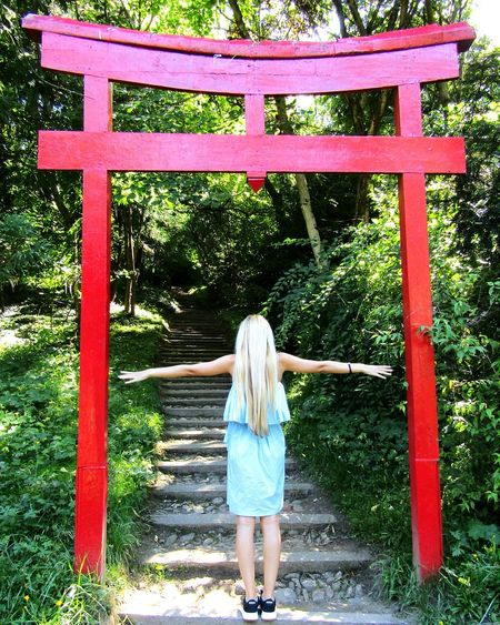 Gate Japanesegarden Red Hello World That's Me Pleasefollowme Forest Thisway Garden Park Beutifulplace Taking Photos Little Girl Hungariangirl Women Who Inspire You Botanicalgarden Gradinabotanica Parkphotography Eyeemcollection NatureIsBeautiful Naturephotography Arroundtheworld Romania Nature On Your Doorstep Landscapephotography