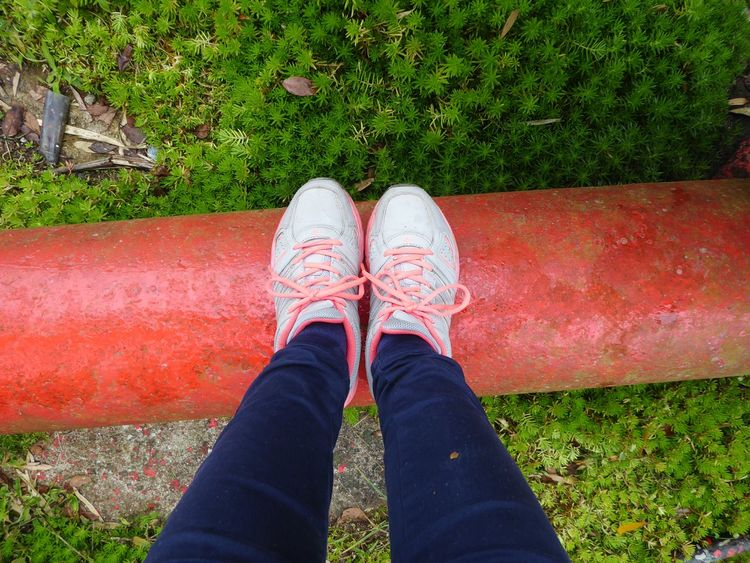 Red line RED LINE Shoe Green Grass Footwear Underground Nature Low Section Standing High Angle View Personal Perspective Canvas Shoe Ground Blooming Young Plant Human Feet Growing