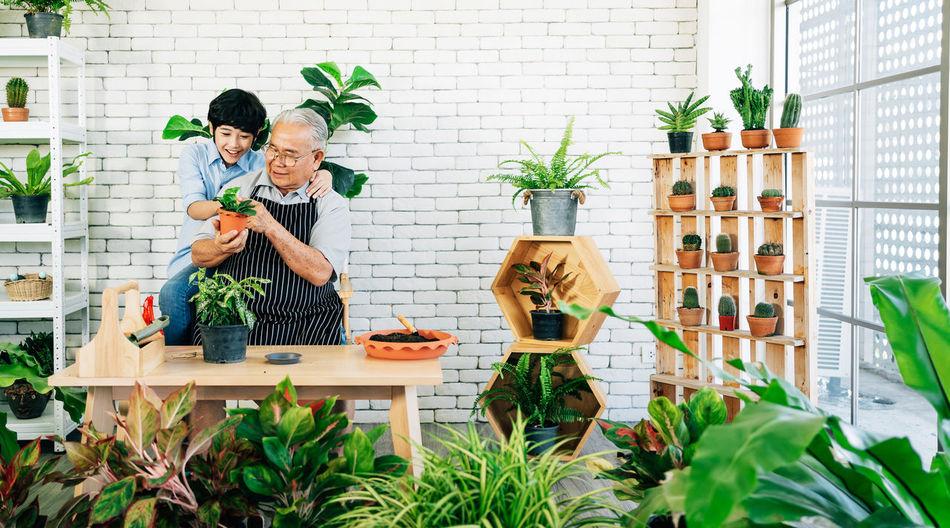 Grandfather teaching grandson in greenhouse