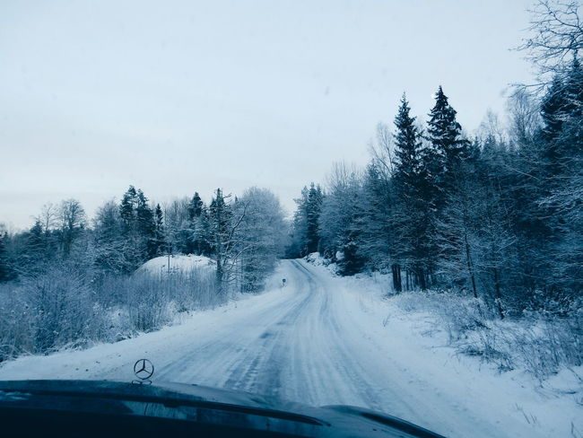 Traveling Home For The Holidays Winter Wonderland Wintertime Nature Cold Temperature Snowing Snow Winter_collection Road Driving Transportations Transport
