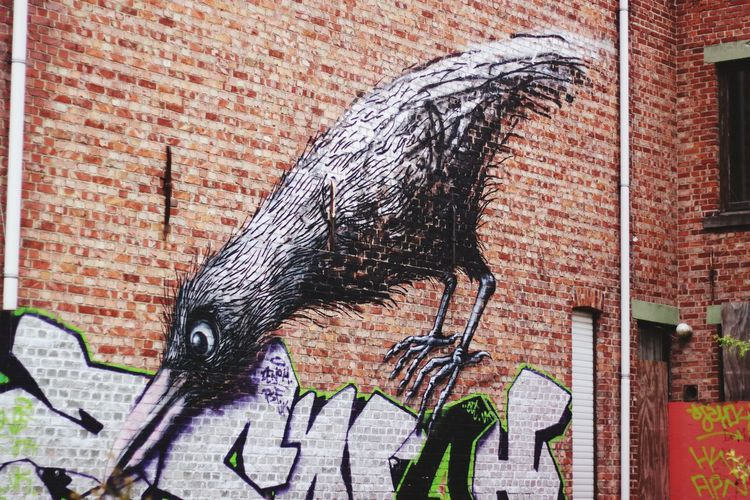 Graffiti Art And Craft Street Art No People Outdoors Day Architecture Close-up Animal Themes Building Exterior Doel Belgium