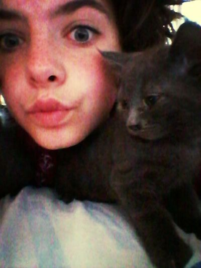 3 petits chat comme ca a donner ♥♥♥ Qui En Veut ???