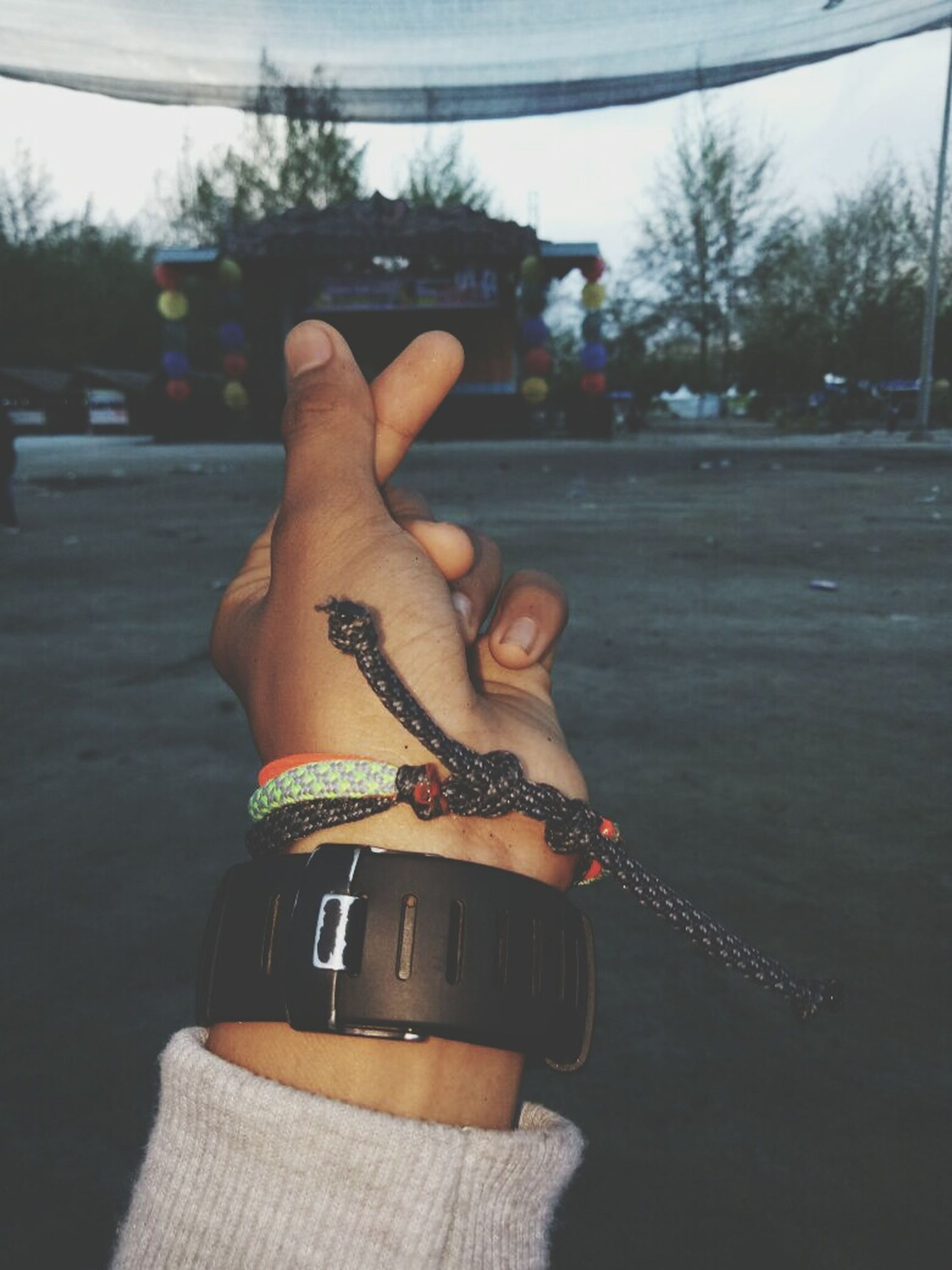 one person, human hand, real people, human body part, outdoors, day, close-up, tree, sky, adult, people