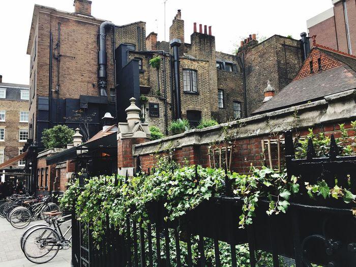 Postcode Postcards Chiltren Street London Bikes Grey And Brown Houses Grey Sky