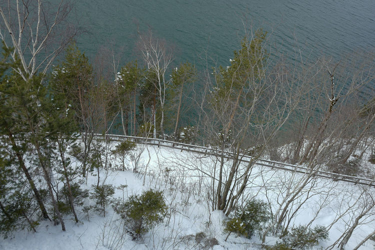 High angle view of trees during winter