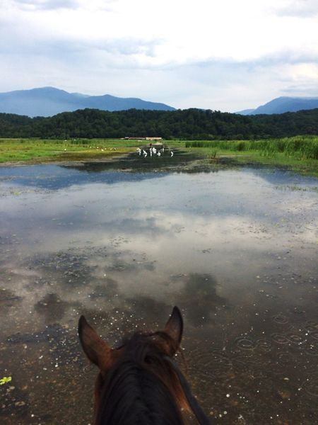 Water Mountain Lake Sky Idyllic Beauty In Nature Nature Outdoors Day Horse Horse Riding Mountain View Tourism Green Color Summer