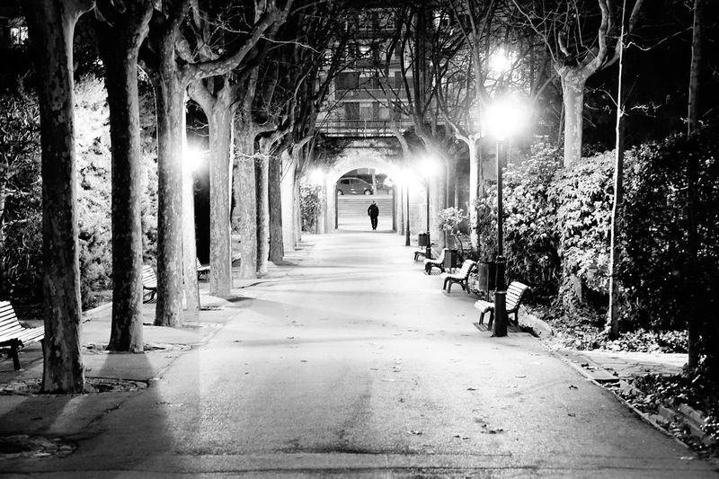 The Way Forward Indoors  Architecture Tunnel Built Structure No People Monochrome Photography Monochrome Black&white Blackandwhite City Citynight Nightphotography Night Outdoors Park Parks Park Life Lights Still Life Scene Prespective Welcome To Black Live For The Story EyeEmNewHere Black And White Friday Walkway Illuminated Real People Tree