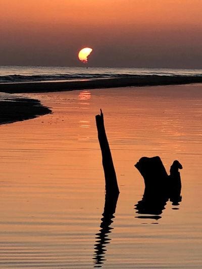 Sunset Log EyeEm Selects Water Sunset Sea Sky Reflection Silhouette Beauty In Nature Beach Nature Orange Color Land Tranquil Scene Horizon Over Water Scenics - Nature Idyllic Tranquility