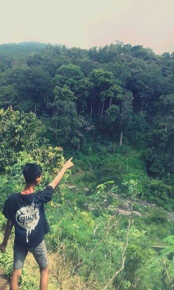 gunung indo