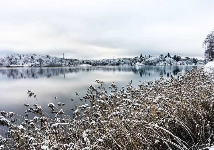 Sky Water Beauty In Nature Scenics - Nature Tranquility Nature Cloud - Sky Cold Temperature Snow Winter