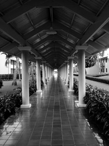 long focal point Tiles Plants Trees Sony Sonya7II Outdoors Shades Caribbean Dominican Republic Vacation Monochrome Punta Cana Blackandwhite Hallway Shelter Hut Contrast Shadow Architecture Indoors  Built Structure Architectural Column Day No People