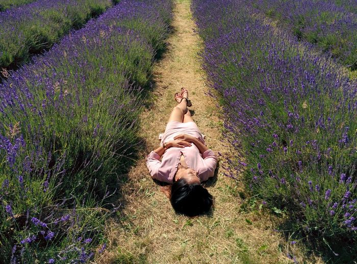 High Angle View Of Young Woman Sleeping On Field Amidst Flowers