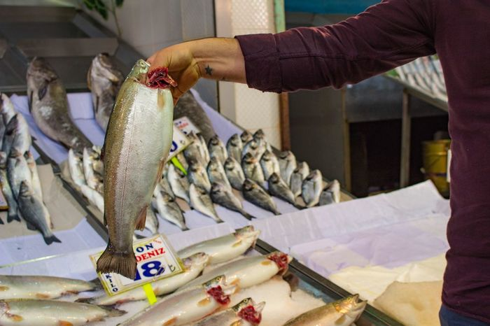 Fish Seafoods Seafood Fishes Market Sale Business