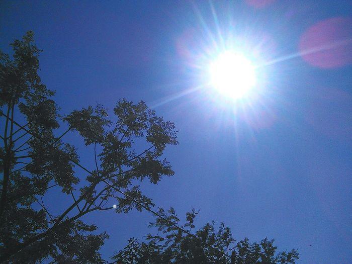 Hello World Sun ☀