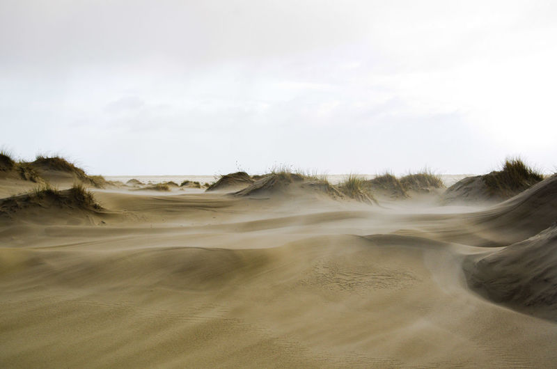 stormy day at the beach Storm Stormy Weather Stormy Sand Dune Sandy Beach Sand Sand And Wind Oceanside Sea Side Pentax K5ll Insel Amrum Arid Climate Desert Dramatic Landscape Extreme Terrain