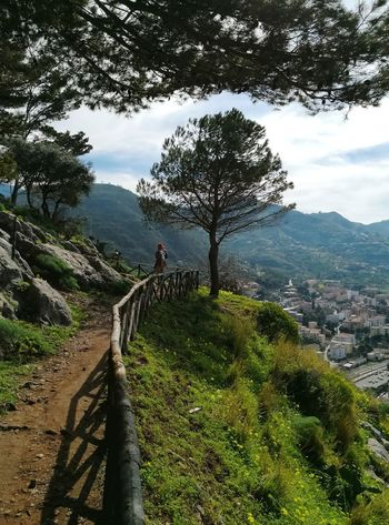La Rocca Cefalu Sicily Hiking Steps And Staircases Stairway Mountain Range Hiking Pole Footbridge Backpack Spiral Stairs Pursuit - Concept Empty Road Steps Hand Rail Staircase Snowcapped Mountain Mountain Climbing Railing Foggy Stairs