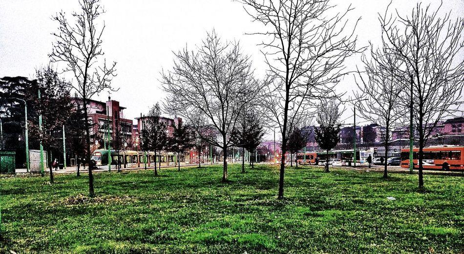 Hdr_Collection Morning Walk Autumn Suburban Landscape Public Transportation
