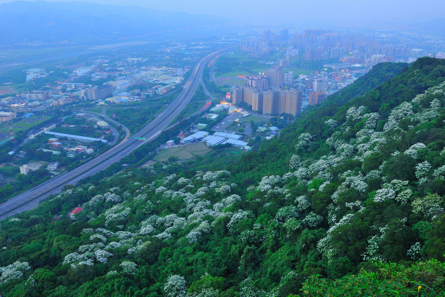 Liberal landscape of the city, fresh and natural. City Beautiful Broad Taiwan's New Taipei City Fugueijiao Lighthouse Traffic Aerial View Architecture Building Exterior Built Structure City Cityscape Day High Angle View Highway Landscape Macro Natural Landscape No People Outdoors Sky Skyscraper Travel Destinations Tree Tung Blossom Urban Skyline