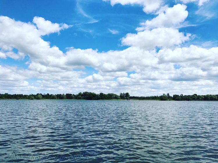 EyeEm Selects DesrochesPhotography Nofilter Artofvisuals ValensLake Hamilton Ontario Conservation Area Beautifulbeach Sunnydayz Blueskies Eyeemquality MarketPhoto CheckTheView AmazingCapture Perfect EyeEmMission Photo RealistLivin2017