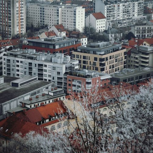 Cold Temperature Ljubljana Slovenia City Cityscape Tree Branch Fall Abstract Beach Photooftheday Alone Title Building Exterior Architecture Built Structure City Cityscape High Angle View Residential Building Roof No People Outdoors Cold Temperature Day Skyscraper Winter Snow
