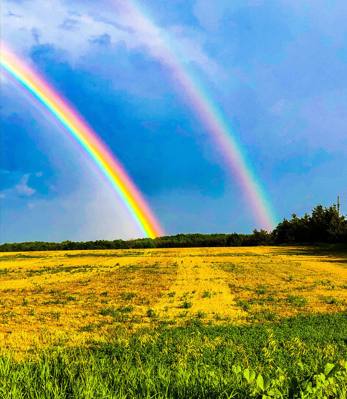 SCENIC VIEW OF RAINBOW OVER LAND FIELD AGAINST SKY