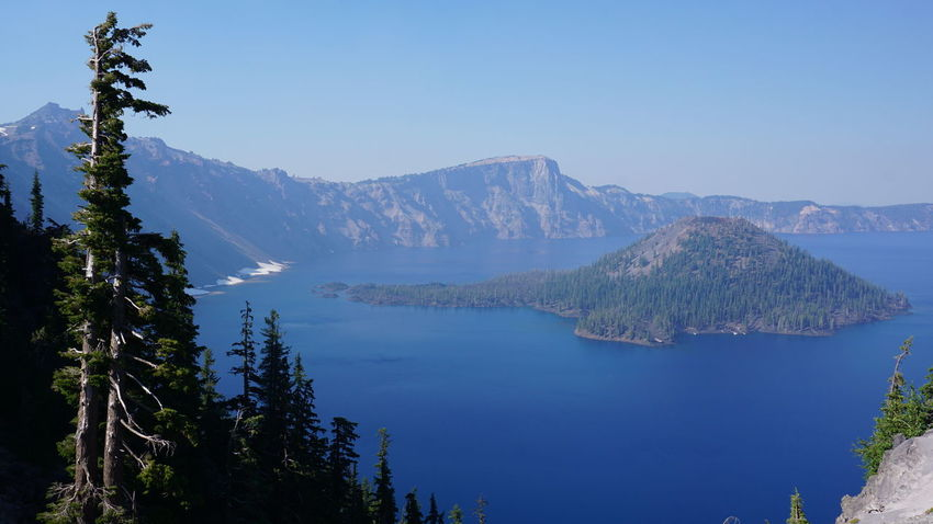 Crater Lake National Park Beauty In Nature Blue Clear Sky Day Mountain Mountain Range Nature No People Outdoors Scenics Sky Small Island Tranquil Scene Tranquility Tree Water