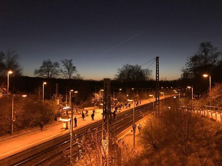 Dortmund Bahnhof Illuminated Night Tree Plant Transportation Sky Street