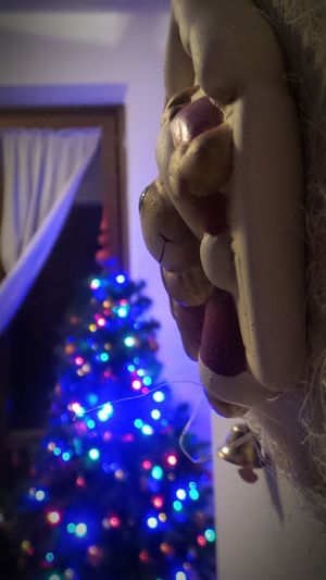Best Christmas Lights Christmastime Christmas Tree Christmas Lights Christmas Decorations Mychristmastree